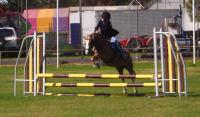 2015_02_07/finesse_jumping.jpg